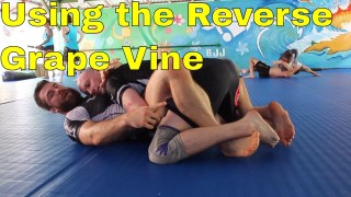 Effective Butterfly Guard Sweep for BJJ White Belts (From Full Guard)- Chewjitsu