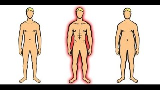 The Ideal BODYFAT % For Men Explained- Mike Dolce