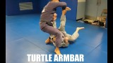 Turtle | Armbar by Professor Kris Kim