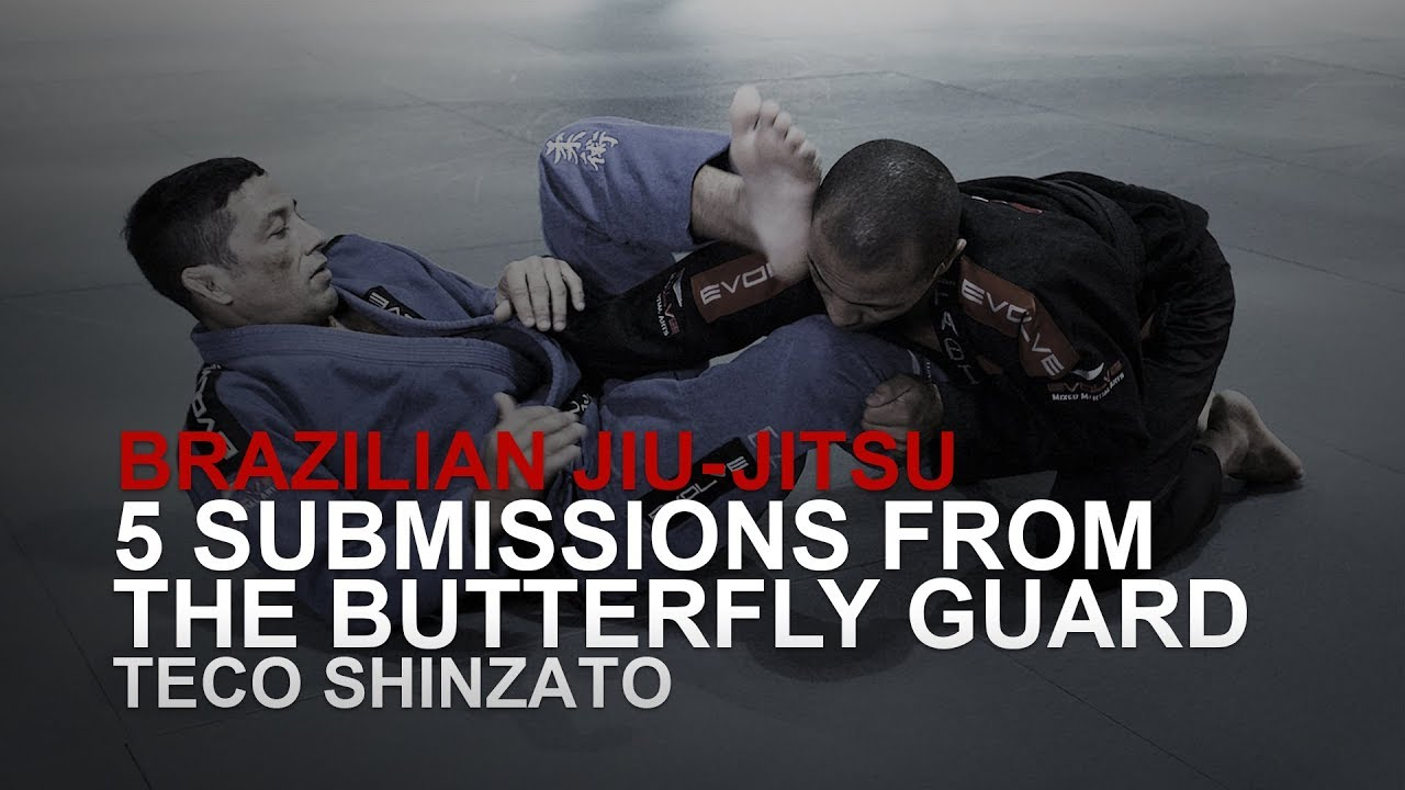 5 Submissions From Butterfly Guard!   Evolve University