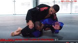 4 Arm Locks From The Turtle Position | Evolve