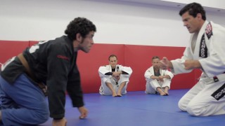 Jean Jacques Machado: The Turtle Position