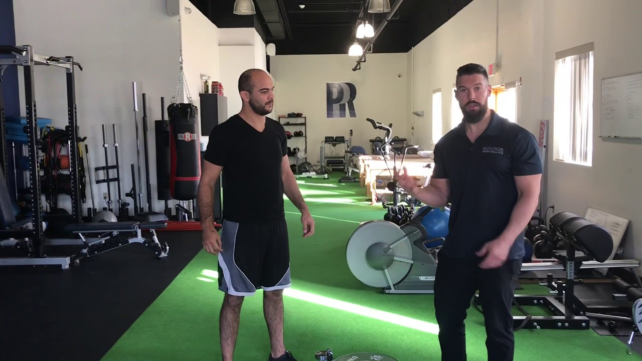 5 Great Strength Exercises For BJJ w/ Bernardo Faria & Molcom Gwilliam