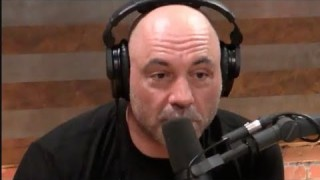 Joe Rogan & Firas Zahabi – Anybody Can Get Ripped