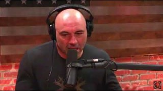 What's the most lethal Martial Art for Fighting? – Joe Rogan