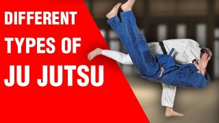 Which Are The Different Types of 'Ju Jutsu'?