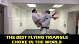 The Best Flying Triangle Choke In The World by Edwin Najmi