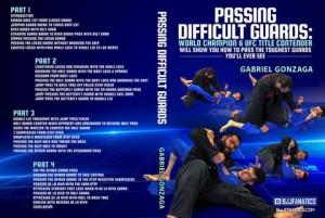 Gabriel_Gonzaga_Cover_large