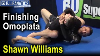 Gold Standard to Finishing Omoplata by Shawn Williams