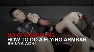 ONE Superstar Shinya Aoki's Flying Armbar
