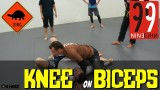 Passing Guard with Knee on Biceps by Eduardo Telles