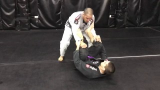 Folding pass against Spider guard