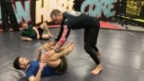 No Gi toreada Pass to Folding pass