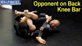Opponent on Back Knee Bar by Masakazu Imanari
