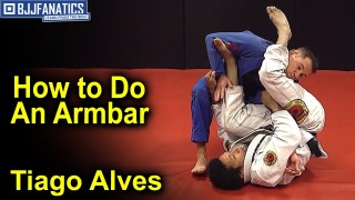 Spider Guard Armbar by Tiago Alves