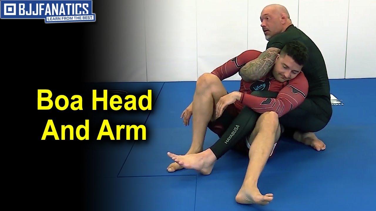 Boa Head & Arm by Neil Melanson