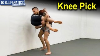 Knee Pick by James Krause