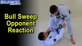 Bull Sweep Opponent Reaction 2 by Charles Negromonte