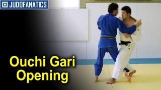 Ouchi Gari Opening Explanation from Hiroomi Fujita