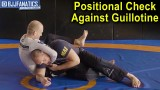 Positional Check Against Guillotine by Priit Mihkelson
