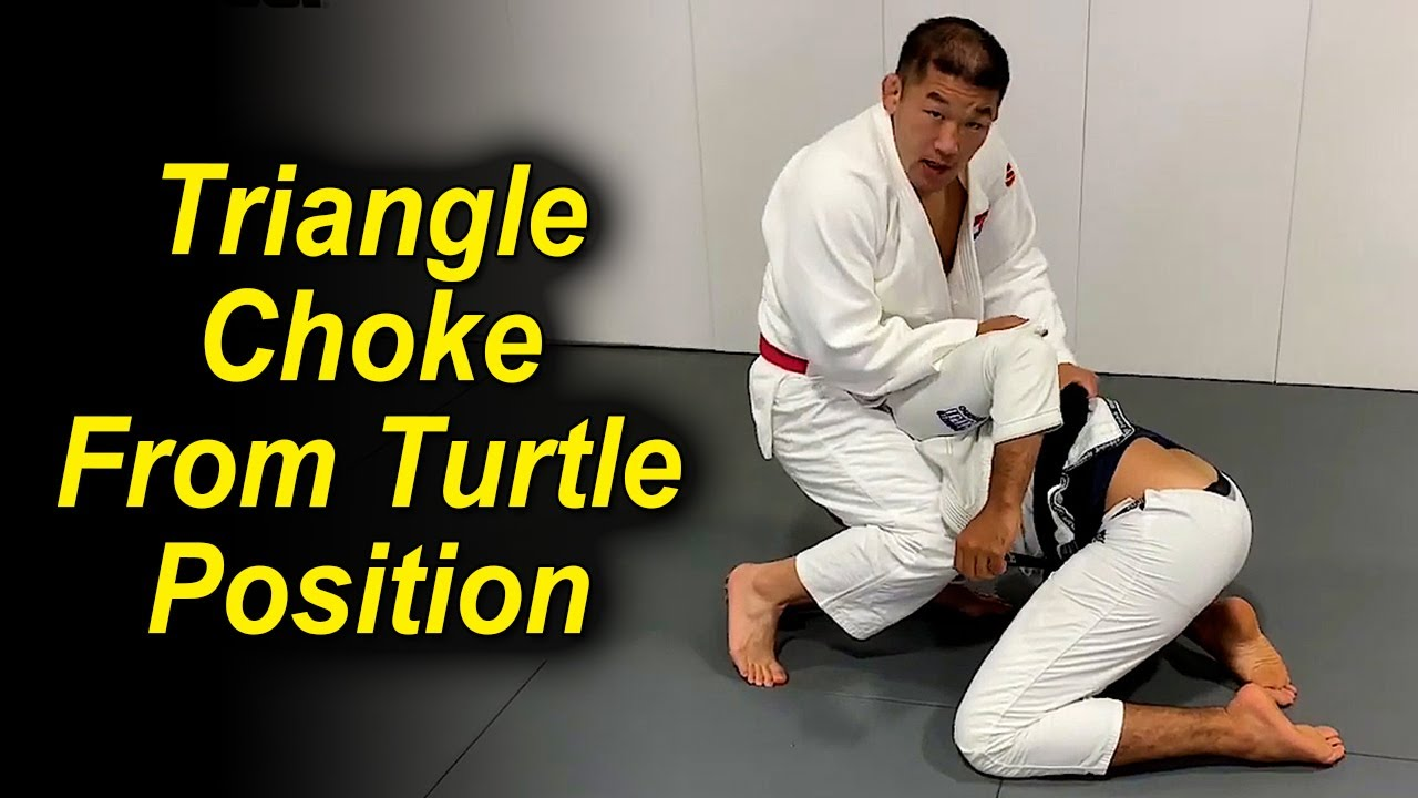 Surprising Judo Triangle Choke From The Turtle Position by Satoshi Ishii