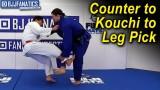 Counter to Kouchi to Leg Pick by Shintaro Higashi