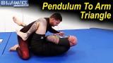 Pendulum To An Arm Triangle by Neil Melanson