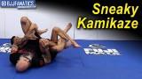 Sneaky Kamikaze by Geo Martinez